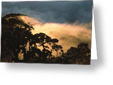 Trees And Mountaintops Above The Clouds Greeting Card