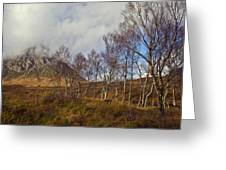 Trees Below Stob Dearg Greeting Card by Gary Eason