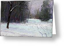 Trees In A Winter Fog Greeting Card