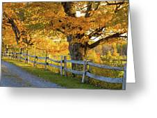 Trees In Autumn Colours And A Fence Greeting Card