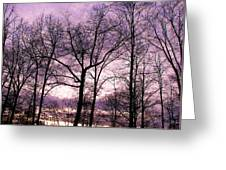 Trees In Glorious Calm Greeting Card