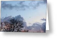 Trees On The Background Of A Cloudy Sky At Twilight Greeting Card by Gal Ashkenazi