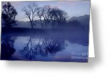 Trees On The Lake Front Greeting Card
