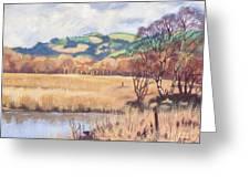 Cors Caron Nature Reserve Tregaron Painting Greeting Card