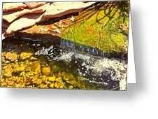 Trickle Waterfall Greeting Card