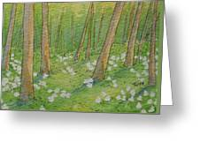 Trillium Blanket Greeting Card