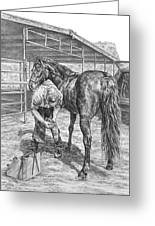 Trim And Fit - Farrier With Horse Art Print Greeting Card