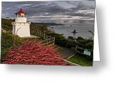 Trinidad Memorial Lighthouse After Storm Greeting Card