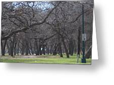Trinity Park Ft Worth Tx Greeting Card