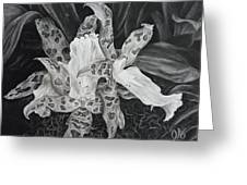 Triple Orchid Blossom Greeting Card