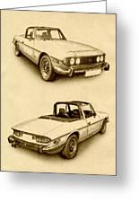 Triumph Stag Greeting Card by Michael Tompsett