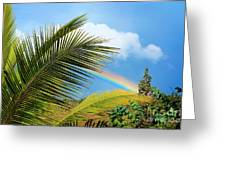 Tropical Rainbow Greeting Card