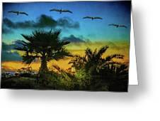 Tropical Sunset With Pelicans Greeting Card