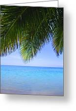 Tropical View Greeting Card