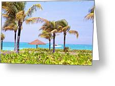Tropical Winds Greeting Card