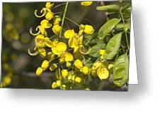Tropical Yellow Flowers Greeting Card