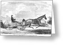 Trotting Horse, 1853 Greeting Card