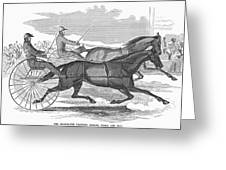 Trotting Horses, 1854 Greeting Card