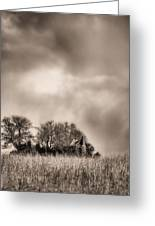 Trouble Brewing II Bw Greeting Card by JC Findley