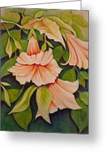 Trumpet Flowers Greeting Card