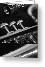 Trumpet II Greeting Card