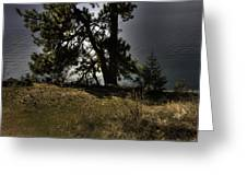 Tubbs Hill On Lake Cd'a Greeting Card