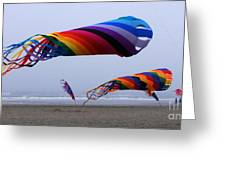 Go Fly A Kite 9 Greeting Card