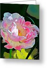 Tulip 44 Greeting Card