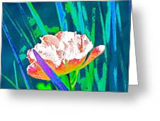 Tulip 45 Greeting Card