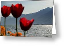 Tulip And Lake Greeting Card
