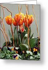 Tulip Arrangement Greeting Card