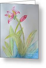 Tulip Duo II Greeting Card
