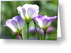 Tulip Gentian Flowers Greeting Card