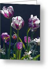 Tulip Springtime Memories Greeting Card