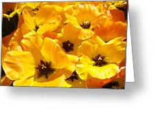 Tulips Art Prints Yellow Tulip Flowers Floral Greeting Card