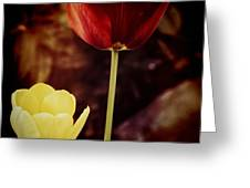 Tulips At Dusk Greeting Card