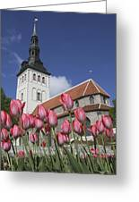 Tulips Outside Niguliste Church Greeting Card