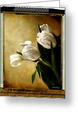 Tulips Side Sepia Greeting Card
