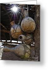 Tumacacori Gourds Greeting Card