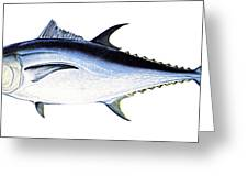 Tuna Greeting Card