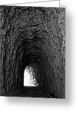 Tunneling Through Greeting Card