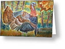 Turkey In Fall Greeting Card