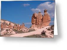 Turkish Camel Greeting Card