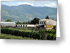 Tuscan Countryside Greeting Card