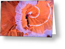 Tutu Swirls Greeting Card by Denice Breaux