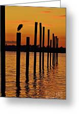 Twelve Poles At Sunset Greeting Card by Lynda Dawson-Youngclaus