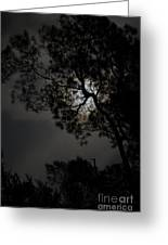 Twilight Calling Greeting Card