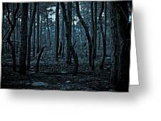Twilight In The Smouldering Forest Greeting Card