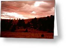 Twilight Mystery  Greeting Card