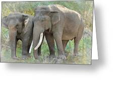 Twin Elephants Greeting Card